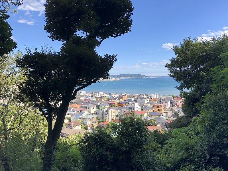 長谷寺眺望散策路の画像